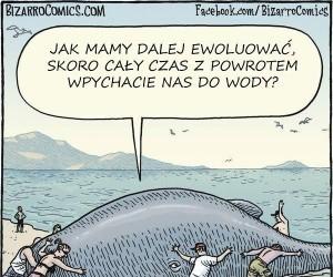 Jak mamy dalej ewoluować?