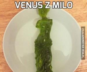 Venus z Milo