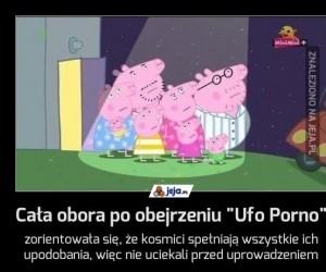 """Cała obora po obejrzeniu """"Ufo Porno"""""""