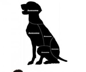 Mapa głaskania