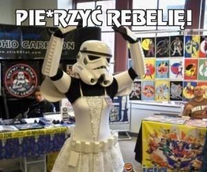 Pie*rzyć rebelię!