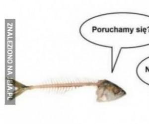 Gorąca rybka
