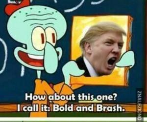 Obrazek z Trumpem