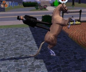 Tymczasem w The Sims...