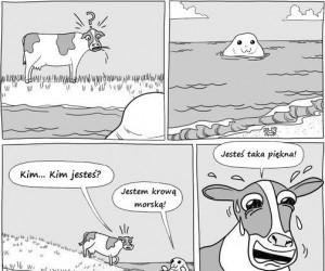 Piękna morska krowa i uczta