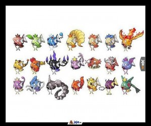 Magikarp to podobno najlepszy Pokemon