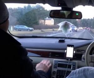 Policja każe dmuchać w alkomat pasażerowi, zamiast kierowcy