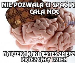 Muszę wyciągać sobie mózg na noc