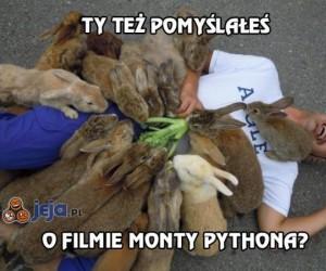 Ty też pomyślałeś o filmie Monty Pythona?