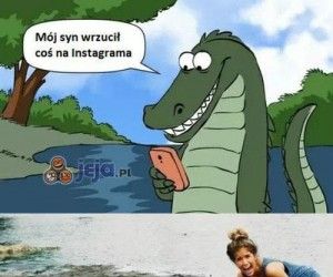To już nawet krokodyle...