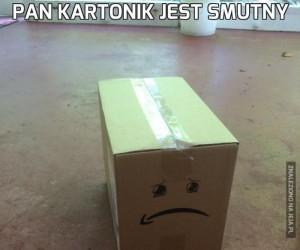 Pan Kartonik jest smutny