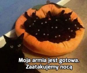 Armia ciemności