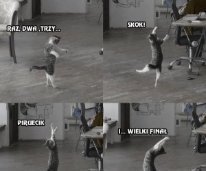 A ty wiesz co robi Twój kot, kiedy Cię nie ma w domu?