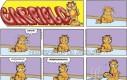 Zmarznięty Garfield