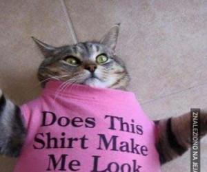 Czy ta koszulka mnie pogrubia?