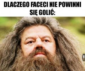 Hagrid bez brody to nie Hagrid