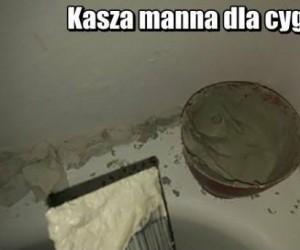 Kasza manna dla cygana