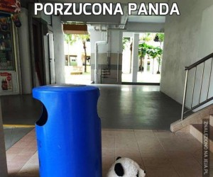 Porzucona panda
