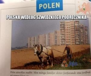 Polska według szwedzkiego podręcznika