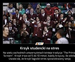Krzyk studencki na stres