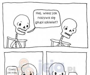 Wiesz jak nazywa się głupi szkielet?
