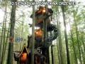 To się nazywa domek na drzewie!
