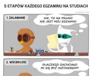 Prawdziwa historia na każdych studiach