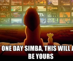 Cała moja biblioteka, Simba...