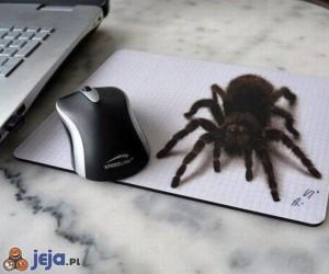 Bałbym się dotknąć myszki