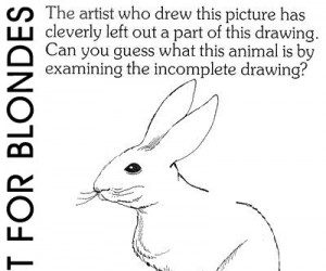 Test IQ - Niekompletny rysunek