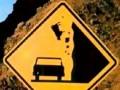 Uwaga na latające krowy