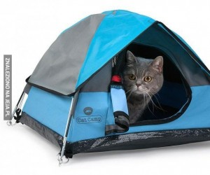 Małe namioty dla kotów