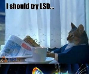 Powinienem spróbować LSD