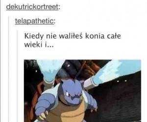 Za dużo Pokemonów