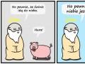 No pewnie, że świnie idą do nieba
