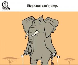Słonie nie mogą skakać