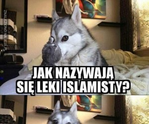 Lek islamisty