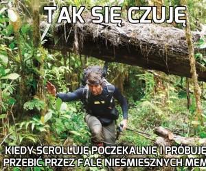 Prawdziwa dżungla