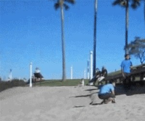 Salta z kumplem