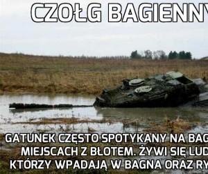 Czołg Bagienny