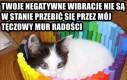 Twoje negatywne wibracje...