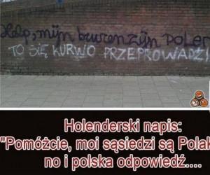 Polacy zagranico