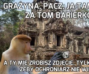 Janusz ryzyka