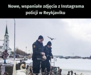 Islandzka policja na Instagramie