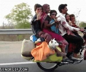Przejażdżka całą rodziną