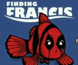Gdzie jest Francis