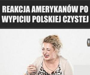 Reakcje na polską gorzałę