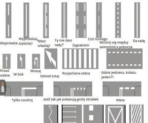 Antyporadnik kierowców - znaki poziome
