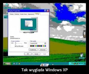 Tak wygląda Windows XP