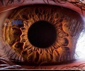 Ludzkie oczy w powiększeniu